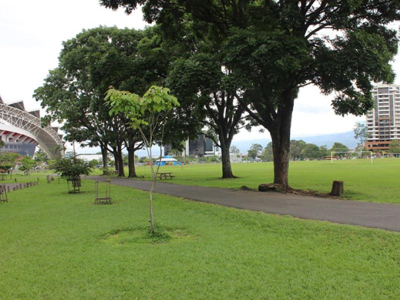 parquelasabana